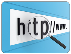 Build an External Link Profile with the help of the IMS team - contact us today here